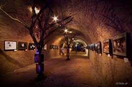 Fotosturm Ausstellung 2015 in Wolkersdorf