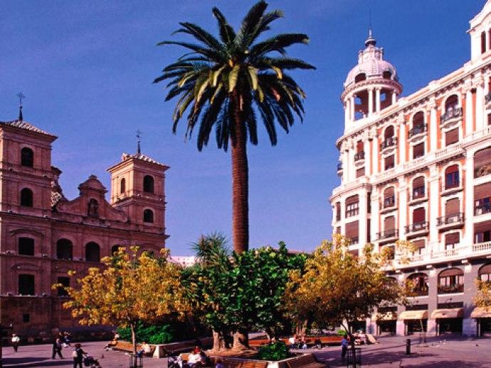 Catedral de Murcia y Plaza de Cardenal Beluga