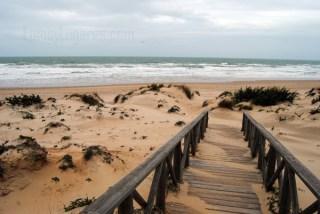 Acceso a playa desde el Hotel Barrosa Park en Cádiz