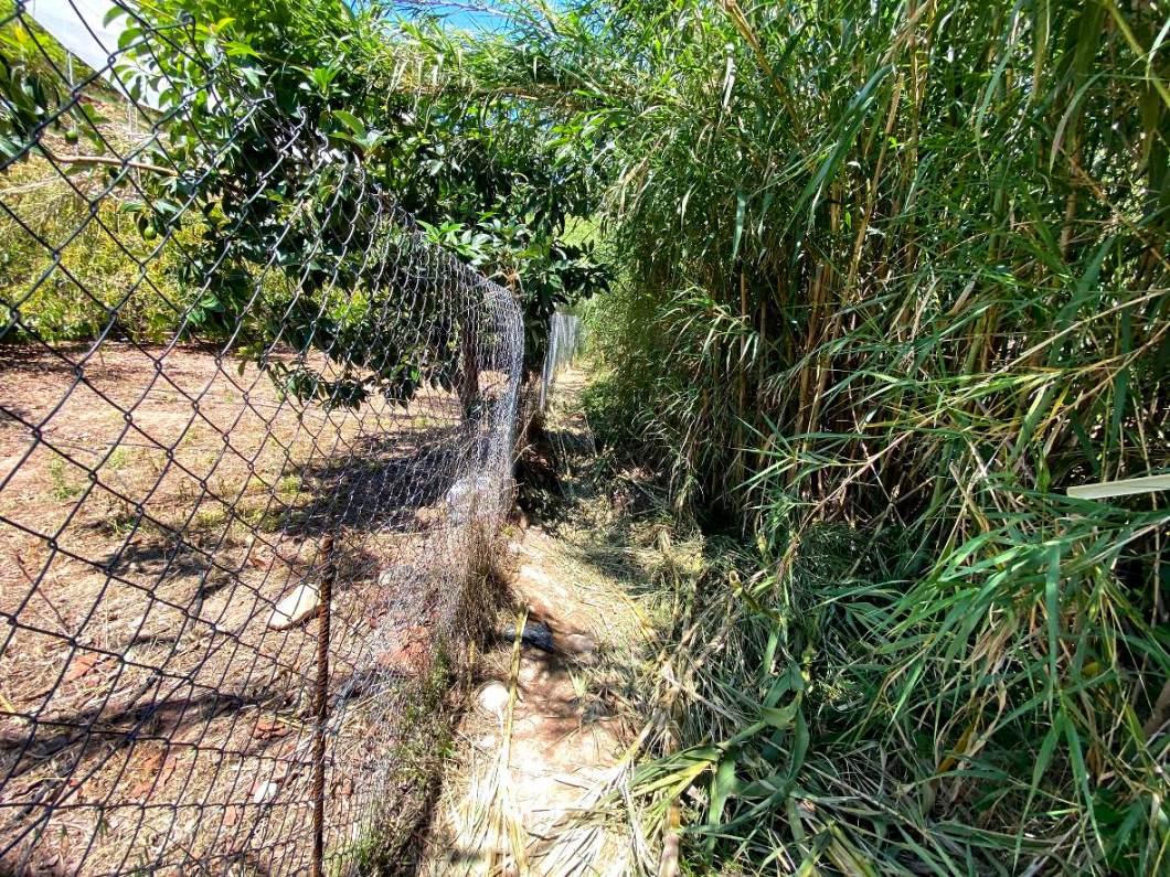 Caminamos pegados a una valla