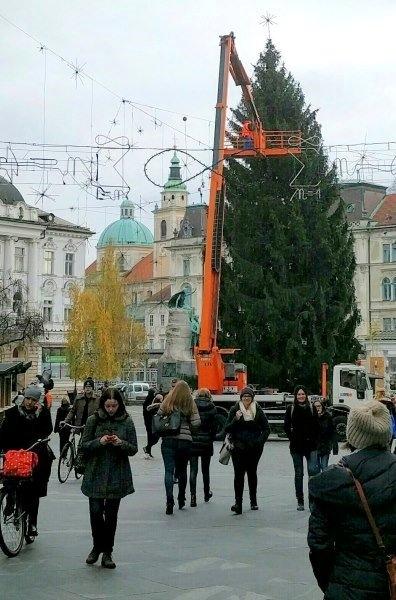 Okrasitev Ljubljane, november 2015. Foto: Tamara Langus.