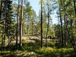 Schweden-5270436