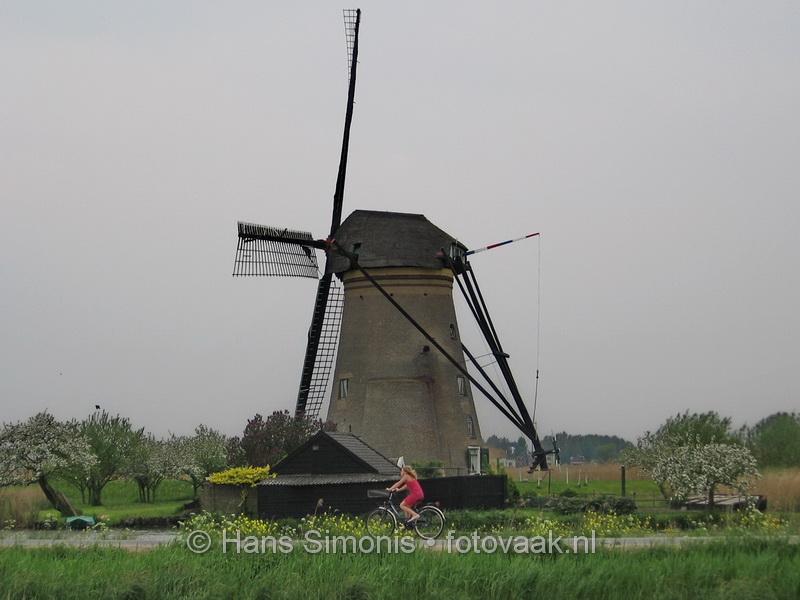 201371_044_in_en_langs_de_hollndse_polder_en_weide_fotovaak_hanssimonis
