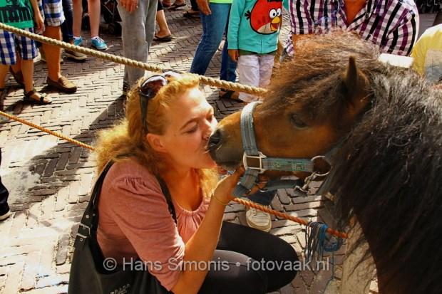 054_paardemarkt_voorschoten_hans-simonis_fotovaak.jpg