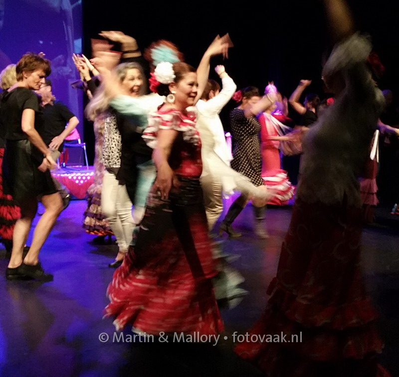 Flamenco in Den Haag