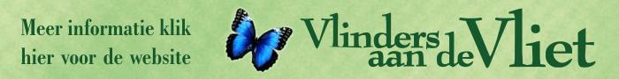 vlinders-aan-de-vliet-banner-fotovaak