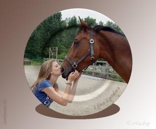 Vriendschap met een paard is vriendschap voor t leven