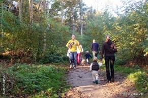 Wandelend genieten van de mooie herfstkleuren in het Lozerbos