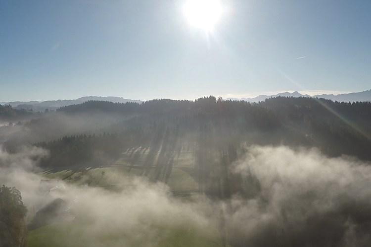Herbstbild mit Nebel