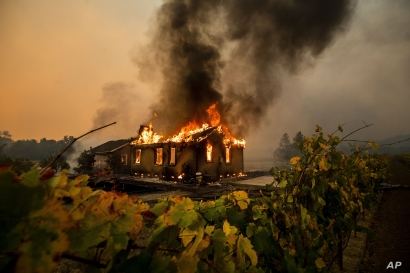 Vines surround a burning building as the Kincade Fire burns through the Jimtown community of unincorporated Sonoma County,…