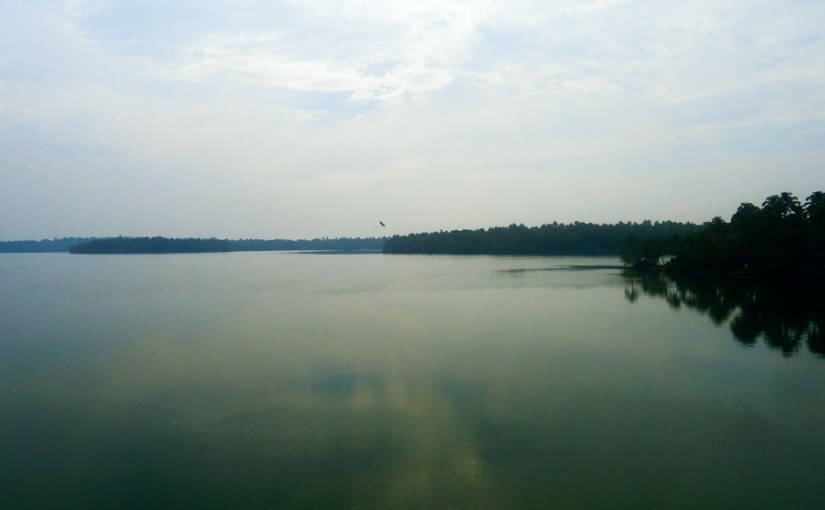 Ashtamudi Lake – Epitomizing Kerala's Natural Beauty