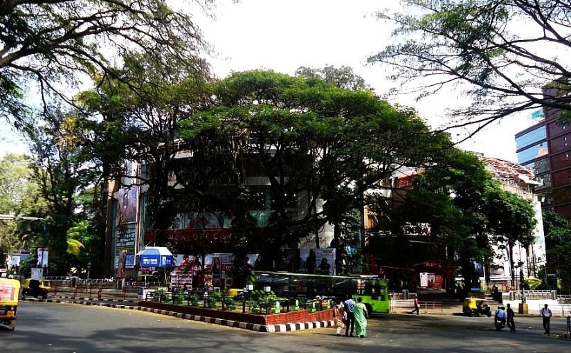 Bangalore Central Hides Behind a Rain Tree at Mayo Hall Circle