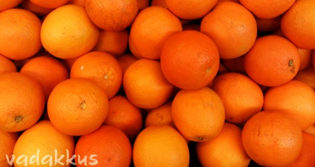 Closeup Photo of Fresh Oranges