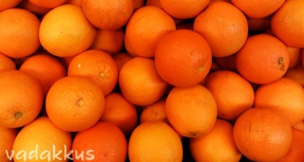 Closeup Photo of Fresh Oranges