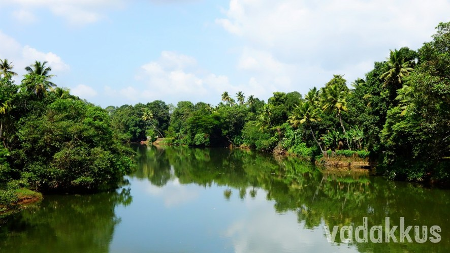 The Green Green Meenachil River near Kottayam