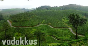 Winding narrow and hilly roads among tea estates in Kerala. This photo is of the highrange in Kerala, the road to Vagamon from Elappara in Idukki district