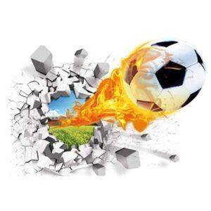 tapis ballon de foot fou de foot