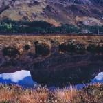 Reflection of Slicoh