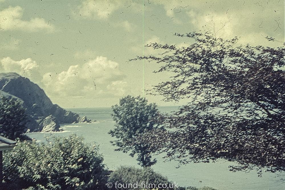 Perutz slide film - Lake and trees