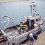 Views around Europe - Fishing boat in Portail France, 1984