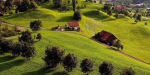 houses set in rolling green hills