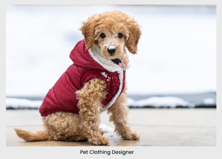 pet clothing design dog cloth pet cloth jacket dog jacket snow | pet business idea  31+ Profitable & Unique Pet Business Ideas For 2021