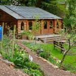 Queen's Wood Community Garden and Cafe