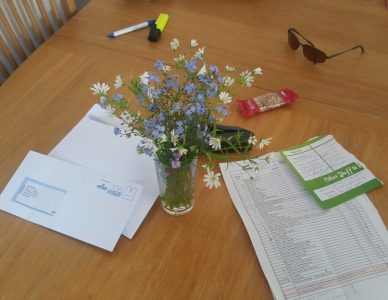 Edible Desk Pretties (Edible Wild Flowers)
