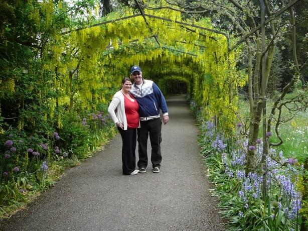 Gardens of  Hampton Court Palace, England