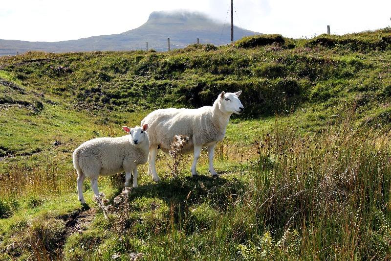 Isle of Skye_Scotland_6