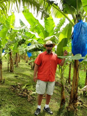 hubby and bananas in st lucia