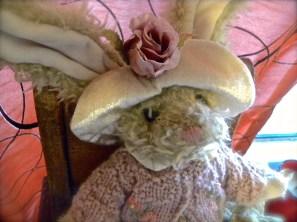 baby girl bunny closeup