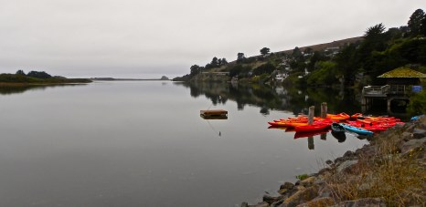 Kayaks on Russian River