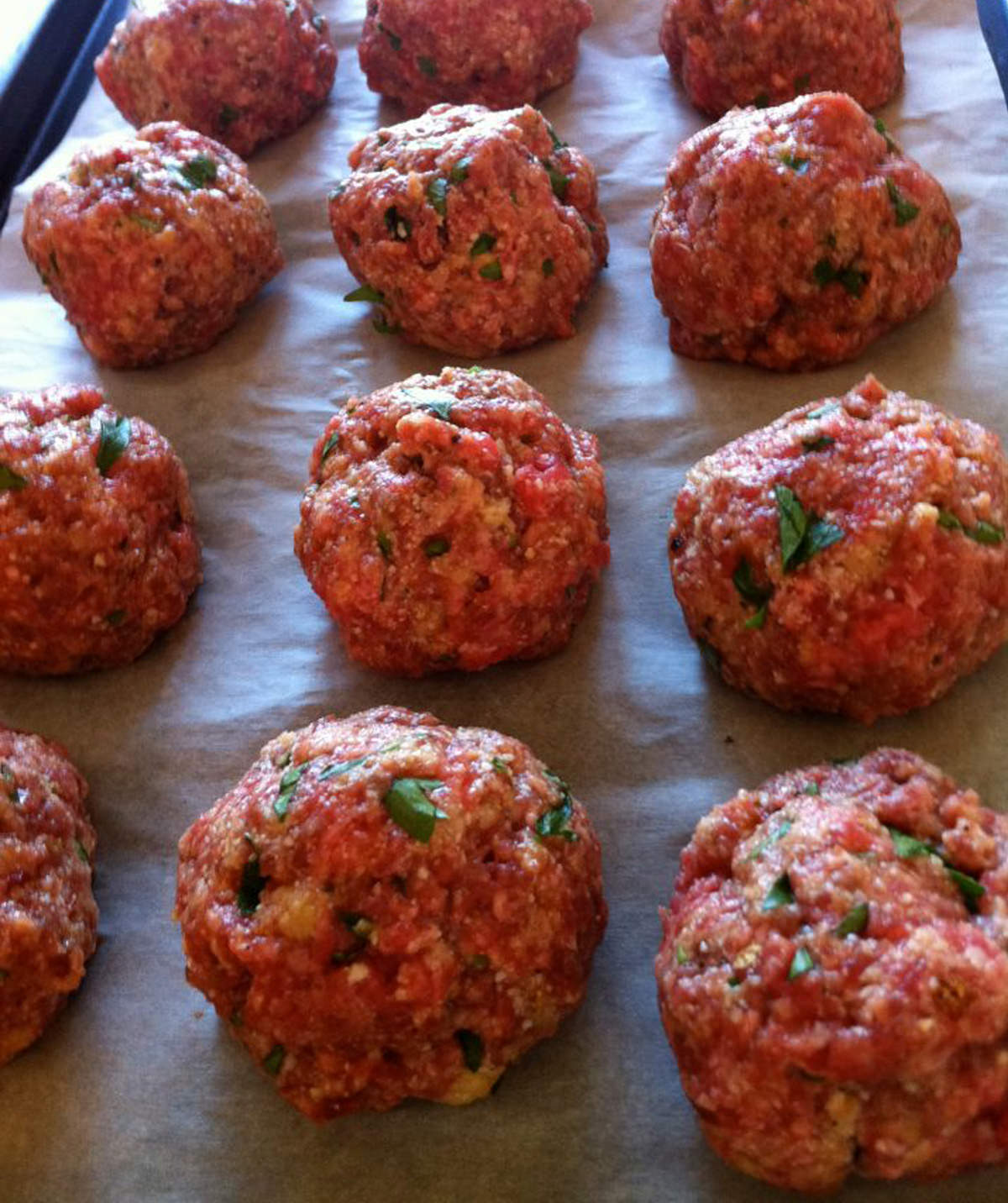 Can i make meatballs with panko bread crumbs