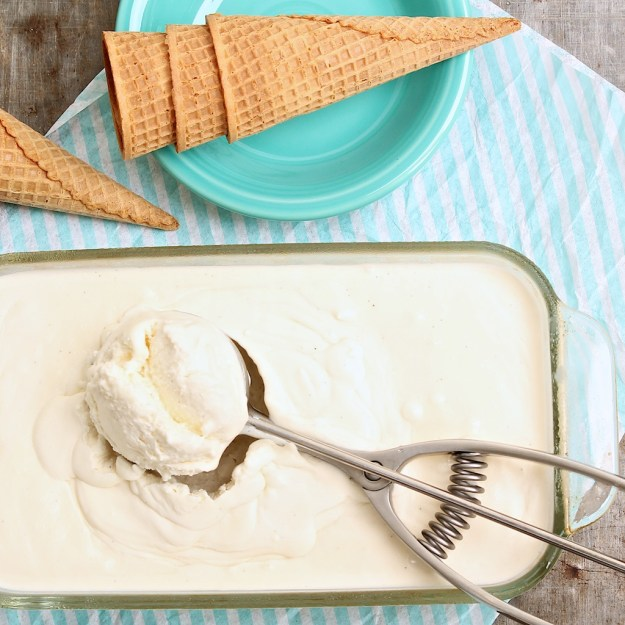 5-Ingredient No-Churn Vanilla Bean Ice Cream -- The sweet perfection of homemade vanilla bean ice cream is so easy with this fun recipe!