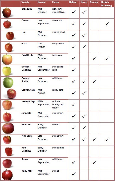 Guide to apples