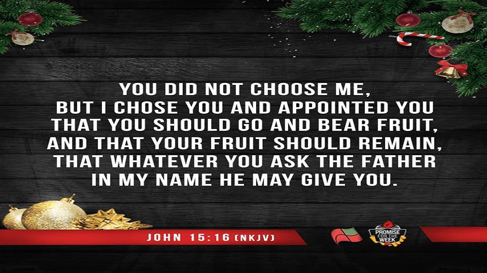Promise for the Week – John 15:16