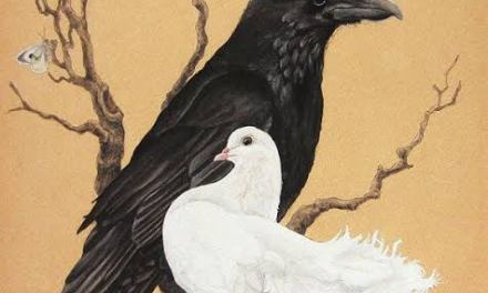 The Raven & The Dove – Revealing the State of the Soul