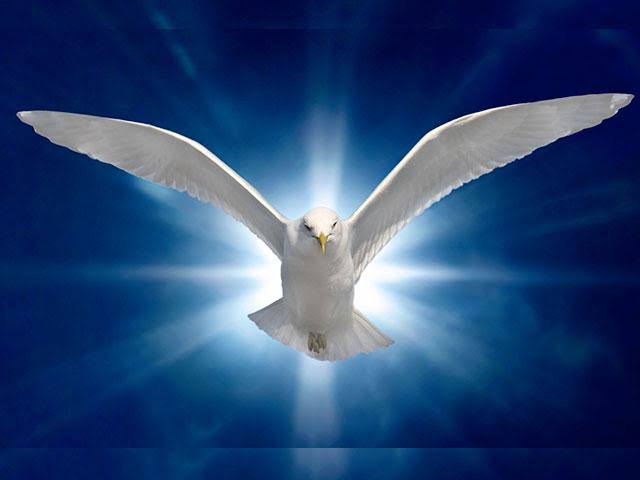 The Comfort of the Holy Spirit