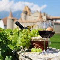 Божоле-Нуво [year] — праздник молодого вина