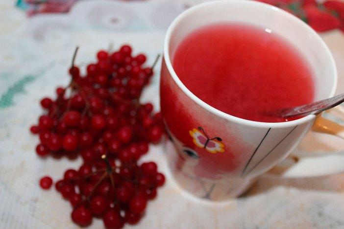 Чем полезна моченая калина: рецепты от простуды