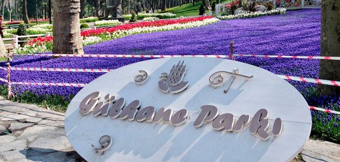 Парк Гюльхане в Стамбуле — где находится / как добраться