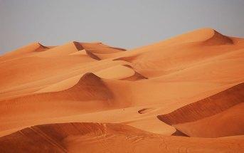 Когда лучше всего ехать в Дубай