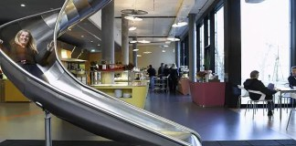 Google Work Environment