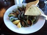 Green shell mussels, Blenheim, New Zealand