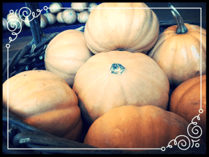 SeminolePumpkins