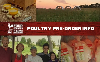 Pastured Poultry Pre-Order is LIVE!!