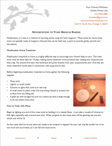 Download the Handout on Moxibustion for Breech Babies
