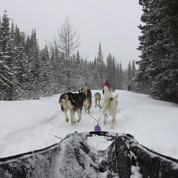 Banff 1