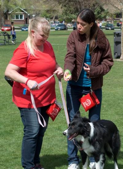 Johanna Teresi -Dog Obedience Course - Salt Lake City - Dog Training - Border Collie